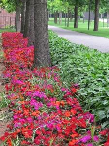 6.Flowerbed